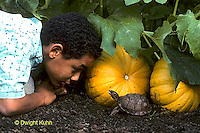 1R14-002a  Minority Child with Box Turtle in Garden.