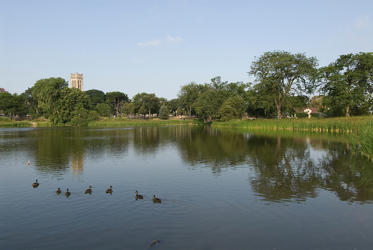 Minnesota, Twin Cities, Minneapolis-Saint Paul: Loring Park and lake in Minneapolis..Photo mnqual230-74875..Photo copyright Lee Foster, www.fostertravel.com, 510-549-2202, lee@fostertravel.com.