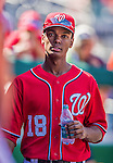 7 September 2014: Washington Nationals outfielder Michael Taylor walks the dugout prior to a game against the Philadelphia Phillies at Nationals Park in Washington, DC. The Nationals defeated the Phillies 3-2 to salvage the final game of their 3-game series. Mandatory Credit: Ed Wolfstein Photo *** RAW (NEF) Image File Available ***