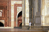 India, Uttar Pradesh, Taj Mahal, worker cleaning exterior walls