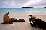 Art Wolfe photographing Galapagos Sea Lion, Ecuador
