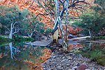 Gorge in the MacDonnell Ranges, Northern Territory, Australia