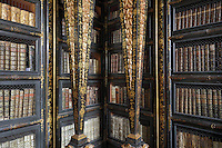 Bookcases with Chinese motifs, lacquer and gilding by Manuel da Silva, in the Black Room of the Joanina Library, or Biblioteca Joanina, a Baroque library built 1717-28 by Gaspar Ferreira, part of the University of Coimbra General Library, in Coimbra, Portugal. The Casa da Livraria was built during the reign of King John V or Joao V, and consists of the Green Room, Red Room and Black Room, with 250,000 books dating from the 16th - 18th centuries. The library is part of the Faculty of Law and the University is housed in the buildings of the Royal Palace of Coimbra. The building is classified as a national monument and UNESCO World Heritage Site. Picture by Manuel Cohen
