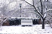 UVa Garden snow