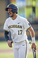 Michigan Wolverines third baseman Drew Lugbauer (17) grimaces in pain after scoring during the NCAA baseball game against the Eastern Michigan Eagles on May 16, 2017 at Ray Fisher Stadium in Ann Arbor, Michigan. Michigan defeated Eastern Michigan 12-4. (Andrew Woolley/Four Seam Images)