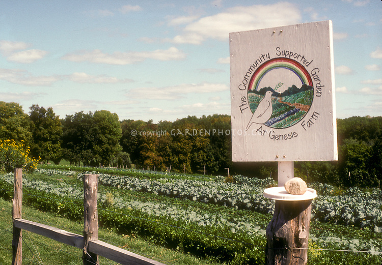 CSA Farm with sign Genesis Farm near vegetable field on sunny day with blue sky