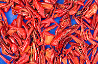 Peppers (Paprika). Scene from a village, Stracin, Bulgaria, 2005