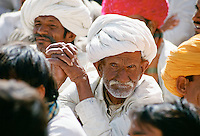 Group of Rajasthani men attending traditional gathering, Rajasthan, India