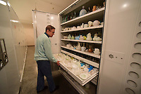 Northwest Arkansas Democrat Gazette/SPENCER TIREY Mary Suter, curator of collections, at the University of Arkansas archeology shows a collection of Milk Glass in the museum collection in the archive in Fayettevile Friday, February 26, 2016.