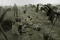 PUSHKAR : The Indian Cattle Fair