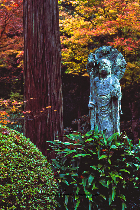 Jizo Statue Jizo Statue in The Sanzen-in