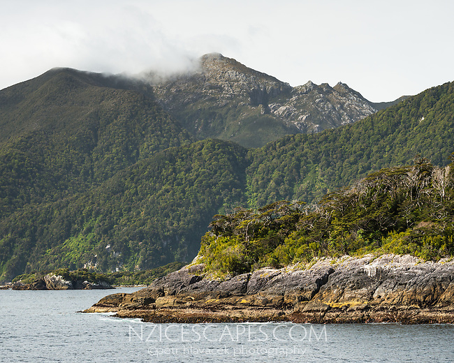 Bauza Island with Secretary Island and Mt. Grono 1196m in background in Doubtful Sound, Fiordland National Park, UNESCO World Heritage Area, Southland, New Zealand, NZ