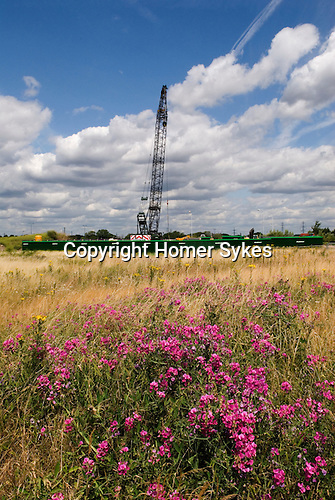 East London regeneration area for the 2012 Olympic Games village park and arena. Hackney Marsh England 2006.Murphy construction laying pipes for power cables. Bully Fen Community Woodland and nature Reserve.