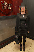 04/06/14<br /> (No Fee pixs) Lorraine OCallaghan arriving to the Stella Bass Album Launch &ldquo;TOO DARN HOT&rdquo; which took place in the Sugar Club Co Dublin this evening&hellip;<br /> Pic Collins  Photos