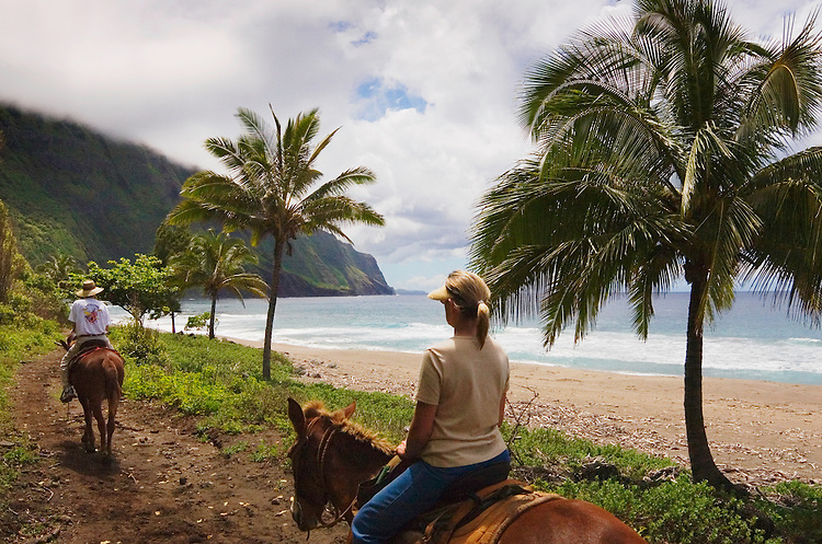 Couple riding along beach on Molokai Mule Ride tour at Kalaupapa National Historic Park; Molokai, Hawaii.