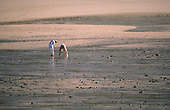 A couple beachcombing at low tide in Careening Bay. Kimberley, W. AUSTRALIA