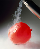 CHARLES' LAW: INFLATED BALLOON AT ROOM TEMPERATURE (2 of 2)<br />