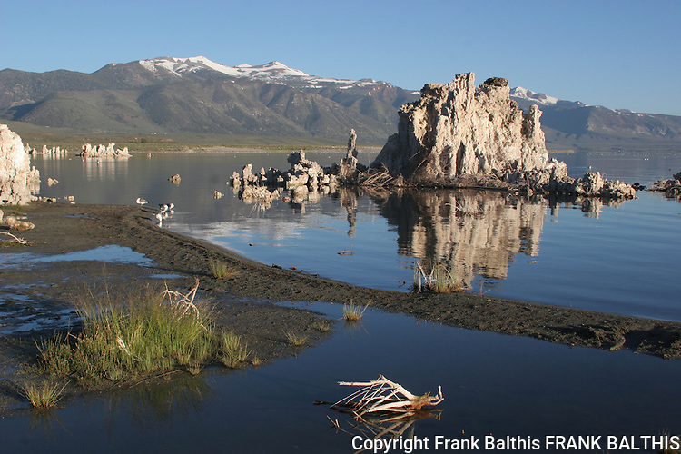 Mono Lake Tufa State Reserve in morning