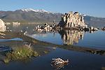 Mono Lake Tufa State Reserve in morning