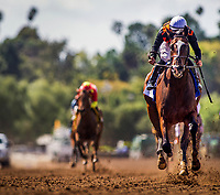 ARCADIA, CA -APRIL 08: Paradise Wood #3, ridden by Flavien Prat wins the Santa Anita Oaks at Santa Anita Park on April 08, 2017 in Arcadia, California. (Photo by Alex Evers/Eclipse Sportswire/Getty Images)