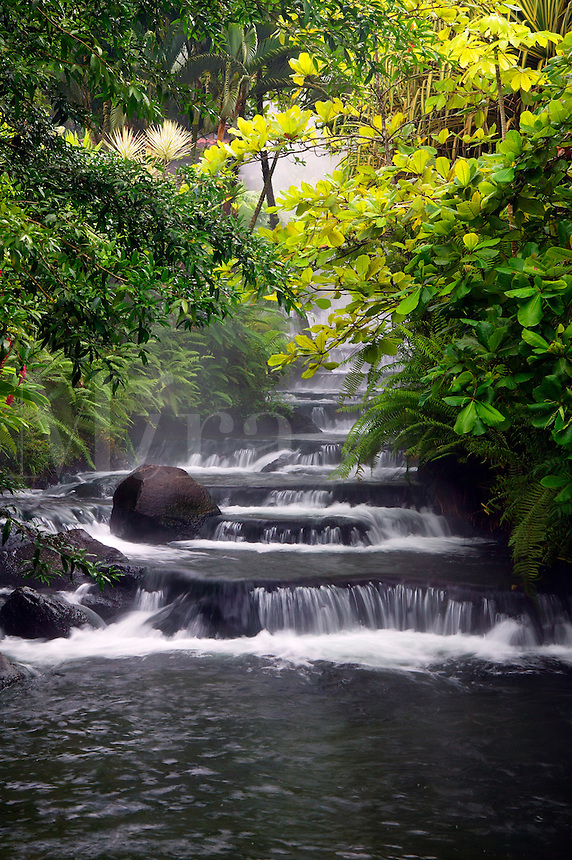 Stream flowing through Tabacon Hot Spring Resort and Spa, Costa Rica