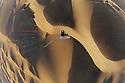 Namibia, Namib Desert, Theo Allofs flying with powered paraglider above Namib Desert sand dunes