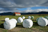 Hay Harvested and Wrapped for Moisture Control and Fermentation, Snaefellsnes, Iceland