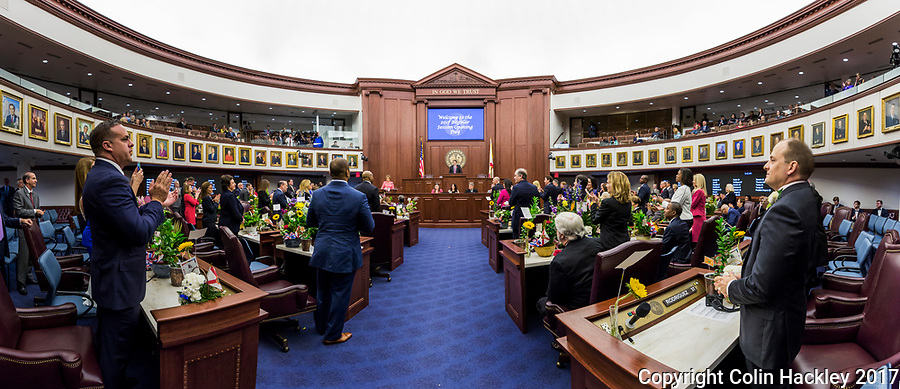 TALLAHASSEE, FLA. 3/7/17-Senate President Joe Negron, R-Stuart, speaks during opening day of the legislative session at the Capitol in Tallahassee.<br /> <br /> EDITOR'S NOTE: This image is comprised of multiple photos taken at the same moment and stitched together in photoshop to create a panorama. <br /> <br /> COLIN HACKLEY PHOTO