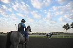 Keeneland 2011: Early morning practice