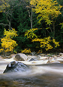 Saywer River during the autumn months in the White Mountain National Forest of New Hampshire USA