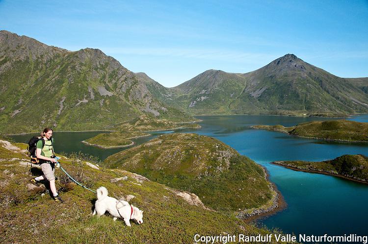 Dame og hund på Sørøya. Husfjorden i bakgrunnen. ---- Woman and dog on Sørøya.