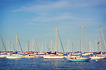 Bobbing up and down on the gentle waves, many sailboats congregate in Monroe Harbor along Chicago's Lake Michigan waterfront.