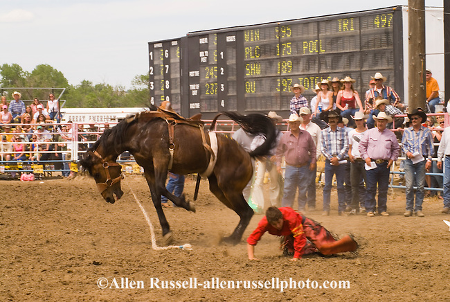 Saddle bronc rider bucked off at Miles City Bucking Horse Sale ...