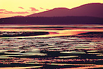 intense sunset over low tide and mud flats, Samish Bay, Washington State