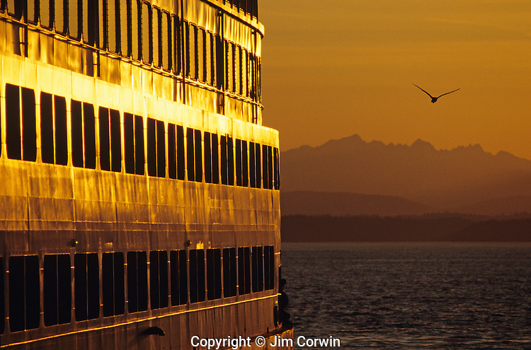 Ferry boat  at sunset along waterfront with Olympic Mountains and Puget Sound with silhouetted seagull flying Seattle Washington State USA
