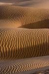 Sand in the Thar Desert, Rajasthan, India