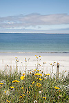 Whitemill Bay Beach; Sanday; Orkney Island; Scotland