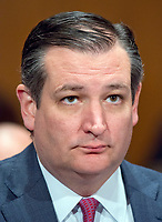 United States Senator Ted Cruz (Republican of Texas) at the confirmation hearing for R. Alexander Acosta, Dean of Florida International University College of Law and US President Donald J. Trump's nominee for US Secretary of Labor, before the US Senate Committee on Health, Education, Labor &amp; Pensions on Capitol Hill in Washington, DC on Wednesday, March 22, 2017.<br /> Credit: Ron Sachs / CNP /MediaPunch