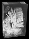 X-ray image of a box of wheat crackers (white on black) by Jim Wehtje, specialist in x-ray art and design images.