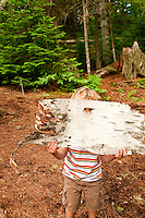 A young boy plays with a piece of birch bark while camping at Craig Lake State Park near Michigamme Michigan.
