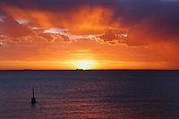 Evening Glory Cottesloe Beach