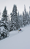 Tom Runcie comes up for air in the untracked sidecountry of Whitewater Resort in BC.