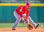 4 March 2016: St. Louis Cardinals infielder Dean Anna warms up prior to a Spring Training pre-season game against the Houston Astros at Osceola County Stadium in Kissimmee, Florida. The Cardinals fell to the Astros 6-3 in Grapefruit League play. Mandatory Credit: Ed Wolfstein Photo *** RAW (NEF) Image File Available ***