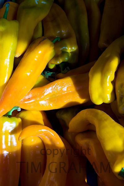 Freshly-picked yellow peppers, capsicums, on sale at food market at La Reole in Bordeaux region of France