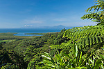 View of Daintree National Park from Walu Wugirriga (Alexandra Range) Lookout.  Daintree National Park, Queensland, Australia