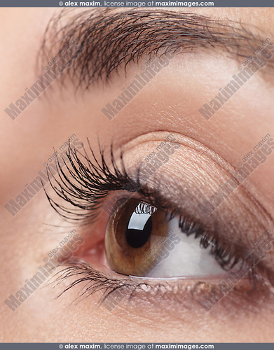 Closeup photo of woman eye with brown iris and long eyelashes