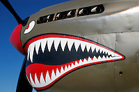 "The Curtiss Aircraft Co.'s P-40 Warhawk fighter was the last of the ""Hawk"" line of aircraft produced in the 1930's & 40's. An early prototype version of the P-40 was the first American fighter capable of speeds greater than 300 MPH. Utilized in most theatres of the Second World War the aircraft was used to great effectiveness by Claire Chenault's American Volunteer Group, the Flying Tigers, who painted menacing shark mouths on their aircraft. Even with the success of the Flying Tigers in China against the Japanese the P-40's performance was quickly eclipsed by the newer aircraft of the time."