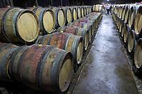 barrel aging cellar dom rossignol trapet gevrey-chambertin cote de nuits burgundy france