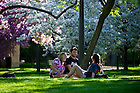 May 8, 2013;  Spring on campus. Photo by Barbara Johnston/University of Notre Dame