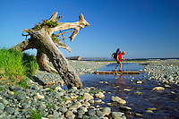 Nootka Island, British Columbia, Canada, August 2006. Low tide takes us over the beaches and rockshelves with tidal pools to the Crawfish Falls. Trekking the Nootka trail takes hikers through dense rainforest and along beaches full of marine life. Photo by Frits Meyst/Adventure4ever.com.
